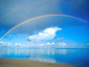 Rainbow-02-goog