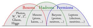 Bosons-Hadrons-Fermions-01-goog