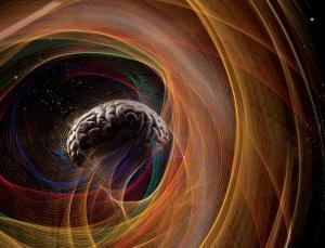 Brain-Boltzmann-02-goog
