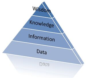 Data-Information-Wisdom-02-goog