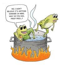 Paradoxes-Boiling-frog-02-goog