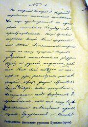 Pushkin MuseumP1060648