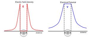 Fields-Electric-10-goog