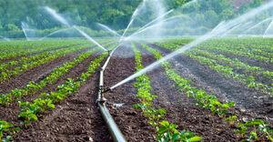 Irrigation-01-goog