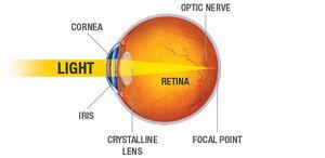 Eye-Optic-Ray-01-goog