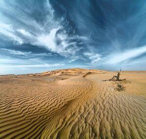 Desert-06-goog