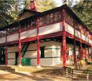Гималайский институт научных исследований ''Урусвати''