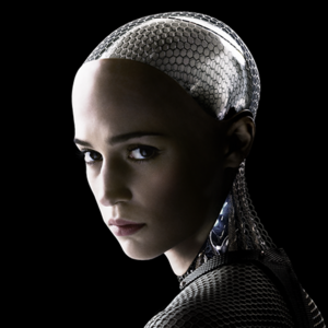 Robots-01-goog