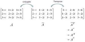Matrices-10-goog