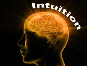 Intuition-01-goog