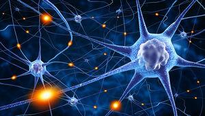 Brain-Neurons-01-goog