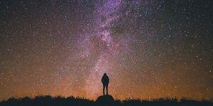 Observer-sky-01-goog