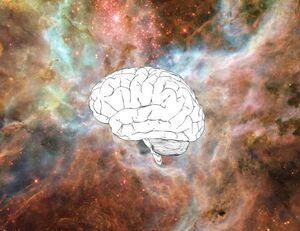 Brain-Boltzmann-01-goog