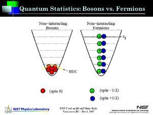 Bosons-Fermions-02-goog