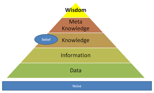 Data-Information-Wisdom-03-goog