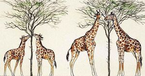 Evolution-giraffe-01-goog