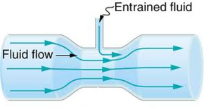 Fluid-flow-01-goog