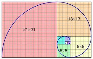 Spiral-Fibonacci-01-goog