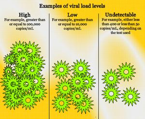 Viral-load-01-goog