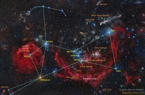 Orion-01-goog