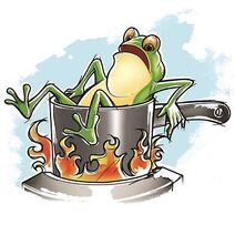 Paradoxes-Boiling-frog-01-goog