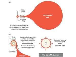 The-Nova-Mechanism