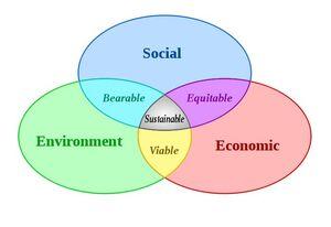 Sustainability-04-goog