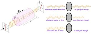 Quantum-Measurement-03-goog