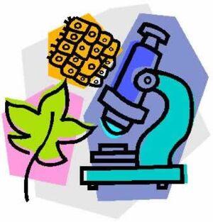 Biology-01-goog