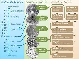 Hierarchy-Science-01-goog