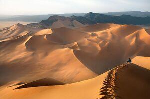 Desert-05-goog
