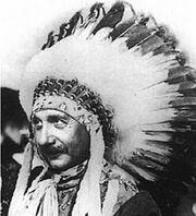 Albert Einstein Indian
