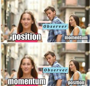 Principles-Heisenberg-Observer-01-goog