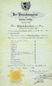 Albert Einstein's exam of maturity grades (color2)