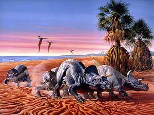 DinosaurusesTriceratops-goog