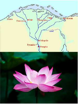 Maps-Egypt-Lotus-goog
