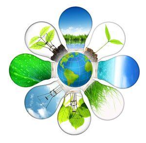 Sustainability-01-goog