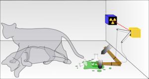 Schrodinger-Cat-07-goog