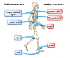 Stability-Mobility-01-goog