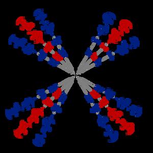 Unit-circle-11-goog