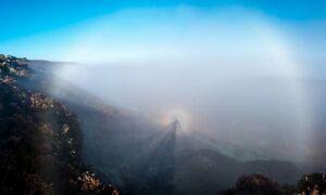 Fog-01-goog