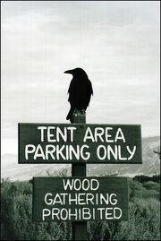Raven sez-