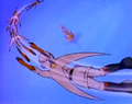 007teamflying-opening.png