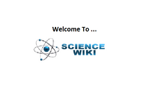 Wiki-wordmark-big