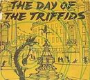 The Day of the Triffids (novel)