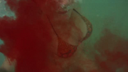Lindsay Conklin 'Sharktopus' 10