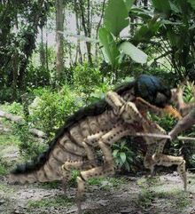 Giant Termites