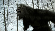Bigfoot Roar2