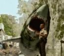 Swamp Shark (Swamp Shark)
