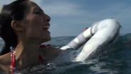 Sharktopus Maria 5
